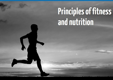 Principles of fitness and nutrition online