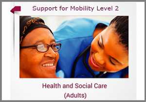 Support for Mobility Level 2 Online Training