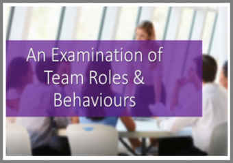An Examination of Team Roles and Behaviours Online Course