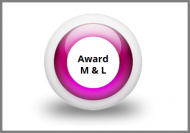 Award in Management and Leadership Online Course