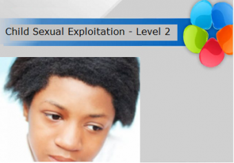 Child Sexual Exploitation Level 2