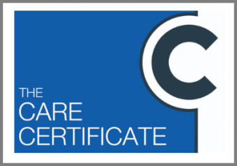 Course Care Certificate Online Course