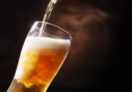 Keeping and Serving Beer Online Course eLearning Marketplace